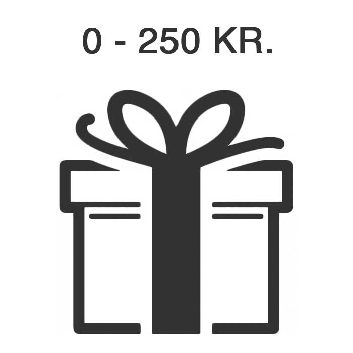 Presenttips Under 250 Kr.