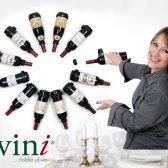 Vinholder Vini til 12 flasker